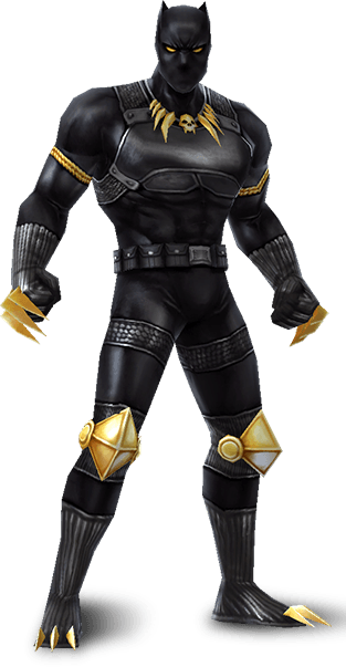 T'Challa (Earth-TRN012)