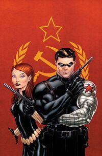 Captain America and Bucky Vol 1 624 Textless.jpg