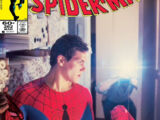 Amazing Spider-Man Vol 1 262