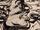 Verdi (Earth-791)