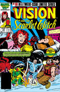 Vision and the Scarlet Witch Vol 2 10