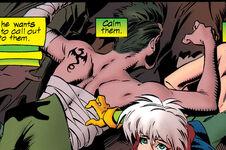 Iron Fist (Earth-295)