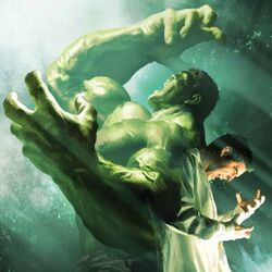Bruce Banner (Earth-616) from Incredible Hulk Vol 3 7.1 cover.jpg