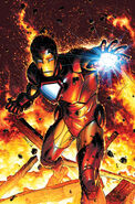Invincible Iron Man Vol 2 2 Peterson Variant Textless