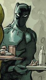 T'Challa (Earth-Unknown)