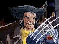 Wolverine (Logan) (Earth-31393)