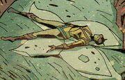 Janet van Dyne (Earth-Unknown) from Marvel Knights Hulk Vol 1 4 001.jpg