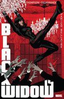 Black Widow Vol 8 14
