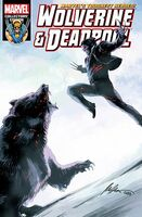 Wolverine and Deadpool Vol 6 7
