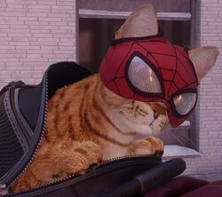 Spider-Man (Cat) (Earth-1048) from Marvel's Spider-Man Miles Morales 003.jpg