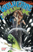 Wolverine Hulk Vol 1 2
