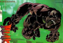 Bruce Banner (Earth-97416)
