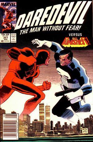 Daredevil Vol 1 257.jpg