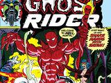 Ghost Rider Vol 2 2