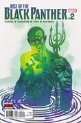 Rise of the Black Panther Vol 1 2
