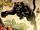 Bagheera (Ideaverse)