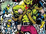Incredible Hulk Vol 1 391