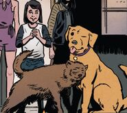Jonathan (Earth-616) and Lucky (Earth-616) from Hawkeye Vol 5 12 001