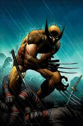 Wolverine Vol 3 20 Romita Variant Textless