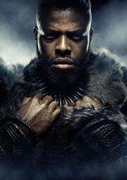 Black Panther (film) poster 014 Textless.jpg