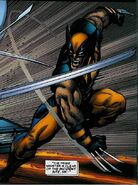 Wolverine Vol 3 36 page - James Howlett (Earth-616)