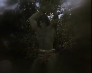 The Incredible Hulk (TV series) Season 2 19