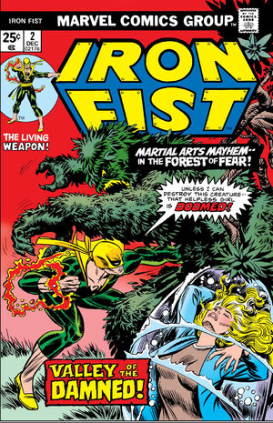 Iron Fist Vol 1 2.jpg