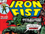 Iron Fist Vol 1 2
