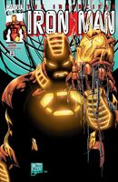 Iron Man Vol 3 29