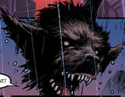 Jack Russell (Earth-13264) from Marvel Zombies Vol 2 2 001.jpg