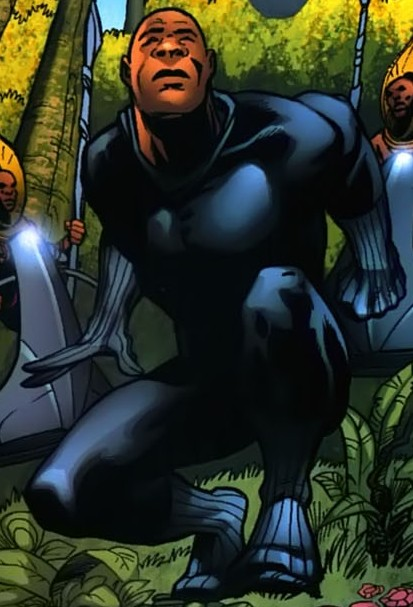 T'Challa (Earth-20051)