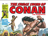 Savage Sword of Conan Vol 1 41