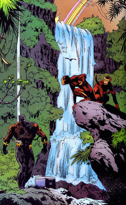 Warrior Falls from Black Panther Vol 3 20 001.jpg