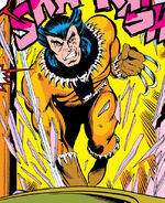 James Howlett (Earth-616) from Iron Fist Vol 1 15 0001.jpg