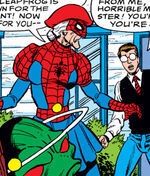 Team Spider-Ma'am (Earth-3123)