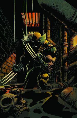 Wolverine Vol 2 900 Textless.jpg
