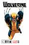 Wolverine Vol 5 3 Ed McGuinness Variant.jpg
