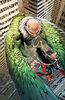 Amazing Spider-Man Vol 5 20.HU Textless.jpg