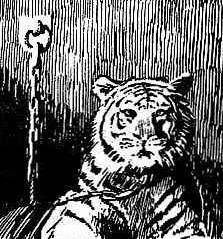 Khan (Tiger) (Earth-616)