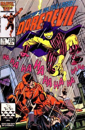 Daredevil Vol 1 234.jpg