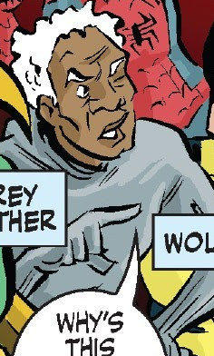 Grey Panther (Earth-21011)