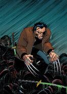Marvel Must Haves Wolverine Vol 1 2 Textless