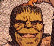 Bruce Banner (Earth-TRN851)