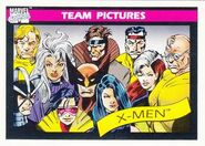X-Men (Earth-616) from Marvel Universe Cards Series I 0001