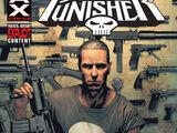 Punisher Vol 7