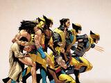 Wolverine's Suit