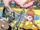 Marvel Fanfare Vol 1 33