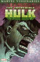 Hulk Visionaries Peter David Vol 1 3