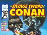 Savage Sword of Conan Vol 1 34
