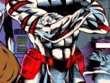 Tigerstryke (Mitchell) (Earth-616)